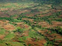 fields den indiska paddybyn Royaltyfri Bild