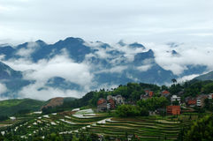 fields den terrasserade mingaoen royaltyfria bilder