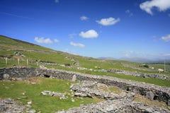 Fields in Dingle Peninsula, Ireland Stock Images