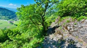 Fields in Dolomites Stock Image
