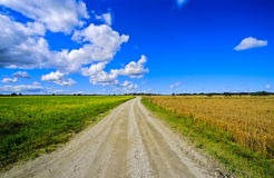 Fields in Estonia no.1 Royalty Free Stock Photos