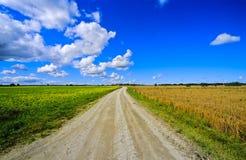 Fields in Estonia no.1 royalty free stock photos