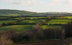 Fields on Exmoor near Lynton, Devon, England Stock Photo