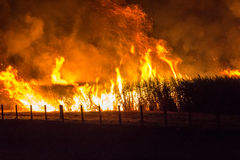 Fields on fire Royalty Free Stock Images