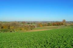 fields flanders Arkivbild