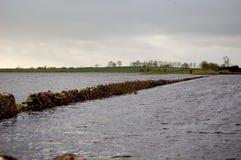 Fields Flooded Stock Photo