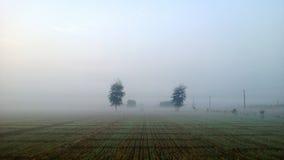 Fields in the fog Stock Photo