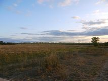 Fields and forest belts of the central chernozem region. Russian field at sunset.Blue darkening sky. Light clouds at sunset.Power line in the distance royalty free stock images