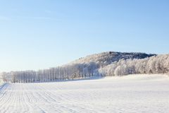 Fields and forest in winter landscapes Royalty Free Stock Images