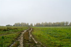 Fields and forests in the fall in Central Russia - country road running along the field. Fields and forests in the fall in Central Russia, country road running Royalty Free Stock Photo