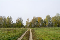 Fields and forests in the fall in Central Russia - country road running along the field. Fields and forests in the fall in Central Russia, country road running Royalty Free Stock Photography