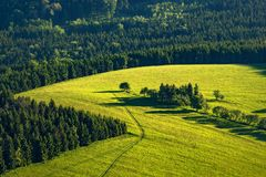 Fields and forests Stock Images