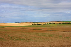 Fields in France Stock Photos