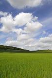 fields fransman arkivfoto