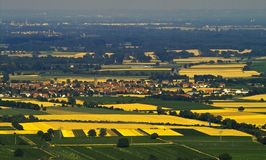 Fields of gold. Golden fields of wheat on the south of Germany Stock Photography