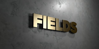 Fields - Gold sign mounted on glossy marble wall  - 3D rendered royalty free stock illustration Royalty Free Stock Image