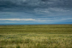 Fields of Grass in Colorado Plains Stock Photo
