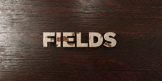 Fields - grungy wooden headline on Maple  - 3D rendered royalty free stock image Stock Photography
