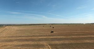 fields höstackar arkivfilmer