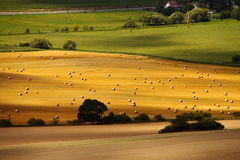Fields after harvest Royalty Free Stock Photography