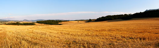 Fields after harvest. Panorama of fields after harvest in late August in Alava, Spain Stock Photography