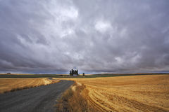 Fields after harvest and road Stock Photos