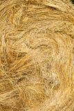 fields harvesting Arkivbild