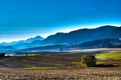 Fields in HDR. Landscape panorama with fields - HDR image stock photo