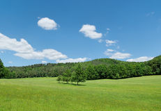 Fields and hills of Walloon. Landscape of Walloon, Belgium with forest Royalty Free Stock Photos