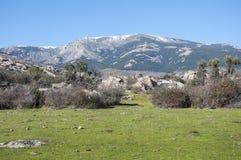 Fields in the Hueco de San Blas Stock Images