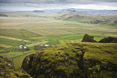 Fields in Iceland Royalty Free Stock Photography