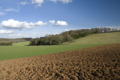 Fields In Cotswold. England Stock Photography