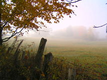 Free Fields In The Fog Stock Images - 12751434