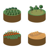 Fields. Isometric set with insulated plates of different fields vector illustration Stock Photos