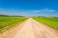 Fields in Israel Stock Photo