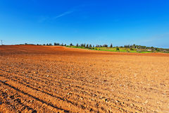 Fields in Israel Royalty Free Stock Photography