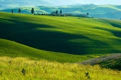 fields italienare Arkivfoto