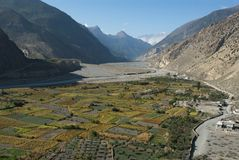Fields of Kali Gandaki Stock Image
