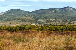 Fields of La Rioja Royalty Free Stock Photos