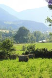 Fields and lands in valley of river Ara, pyrenees Royalty Free Stock Photography