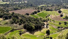Fields landscape. Fields in priorat area, Catalonia Royalty Free Stock Photos