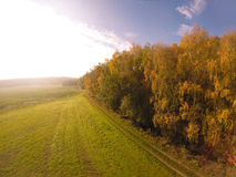 Fields landscape in autumn Royalty Free Stock Image