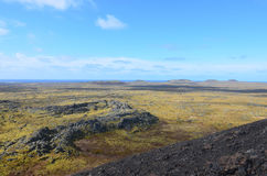 Fields of Lava Rock Covered in Moss Stock Photos
