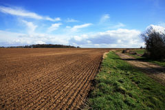 Fields in Le Nord. Fields and blue sky in Le Nord - France Stock Images