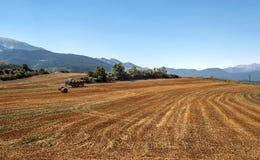 Fields of LLeida Stock Photo