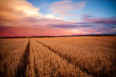 Fields. Long exposure of sunset over Moravian Karst area Royalty Free Stock Image