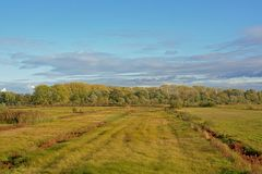 Fields in the marsh with autumn trees in the background on a suny day. In bourgoyen nature reserve, Ghent, Flanders, Belgium royalty free stock image