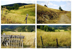 Fields and meadows. Green fields and meadows on the Zlatibor mountain Stock Photography