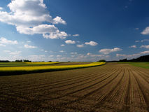 Fields and meadows. And a wide horizon with clouds and blue sky Stock Photo