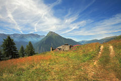 Fields and meadows in Alps. Stock Photo